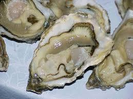 Las ostras gallegas, de MariscoVip.com